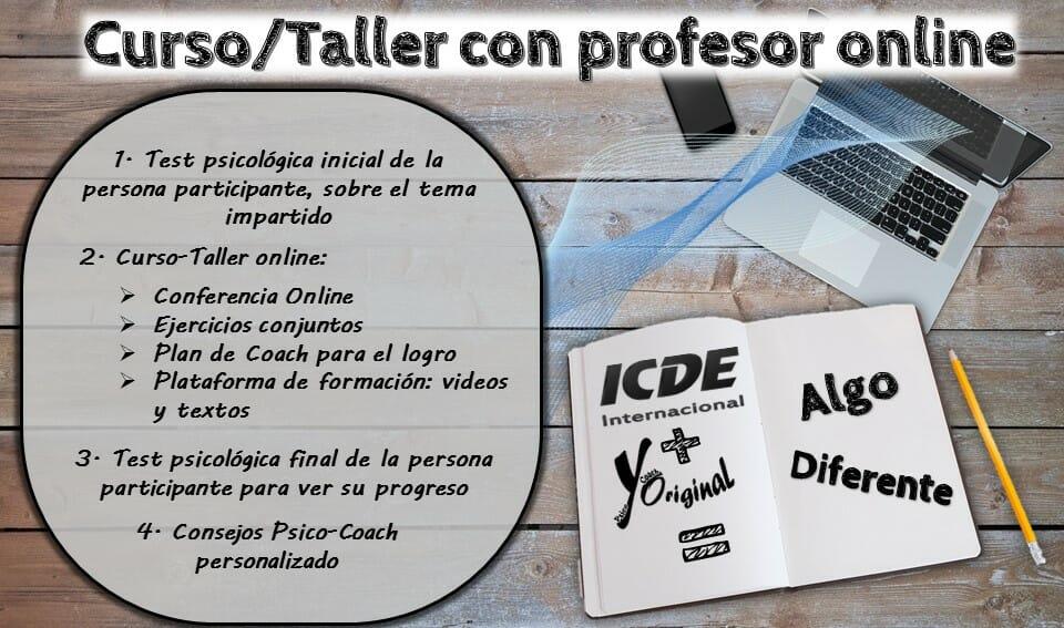 Curso taller con profesor On Line PARA APRENDER A QUE NO TE ROBEN EL TIEMPO